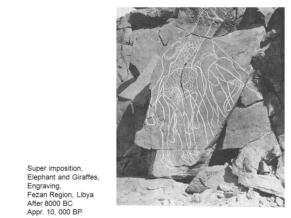 Super imposition, Elephant and Giraffes, Engraving, Fezan Region, Libya.