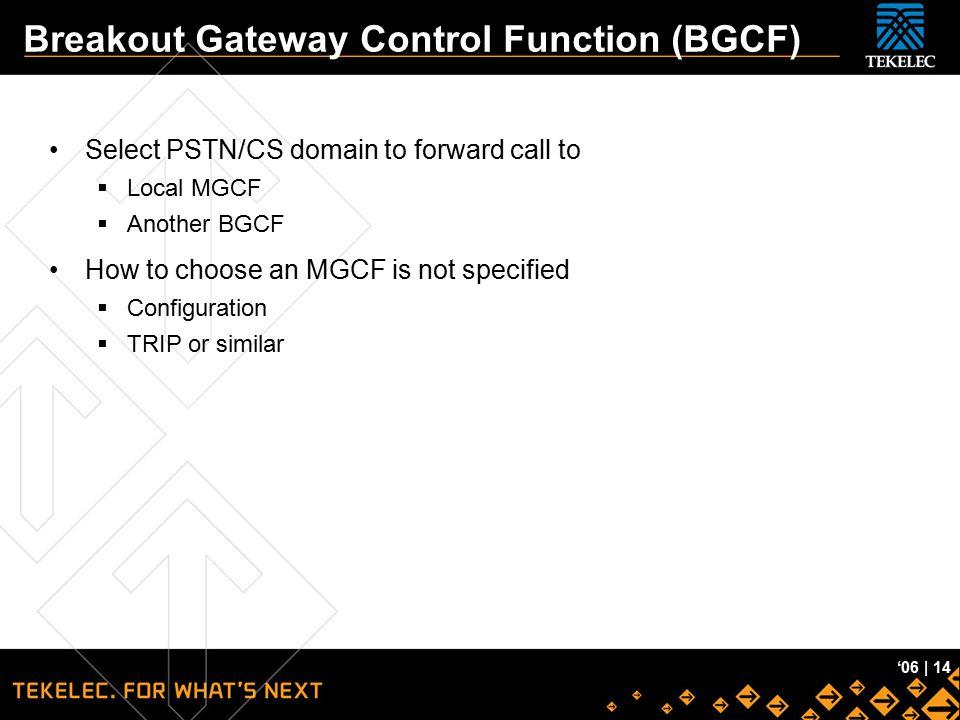Breakout Gateway Control Function (BGCF)
