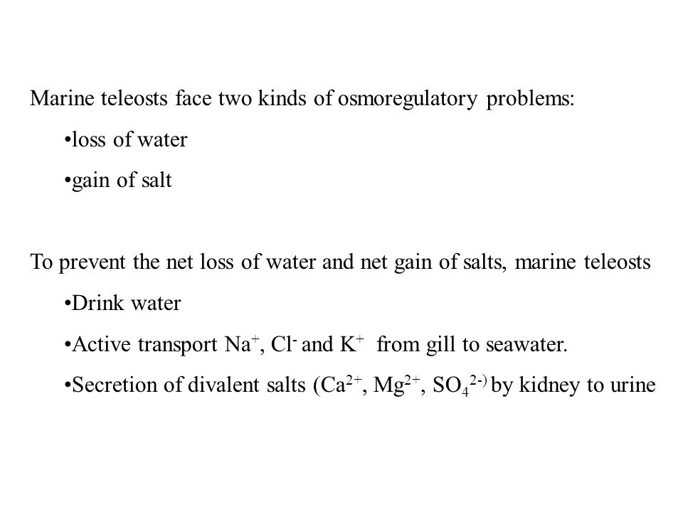 Marine teleosts face two kinds of osmoregulatory problems: