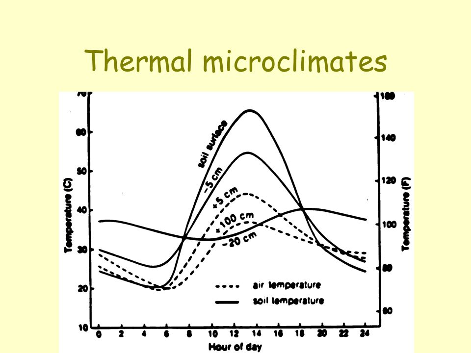 Thermal microclimates