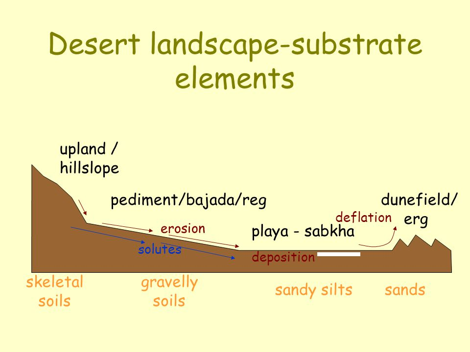Desert landscape-substrate elements