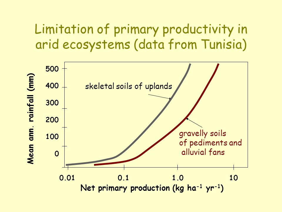 Limitation of primary productivity in arid ecosystems (data from Tunisia)