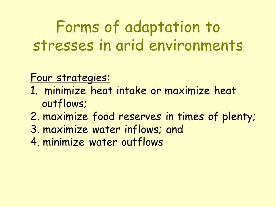 Forms of adaptation to stresses in arid environments