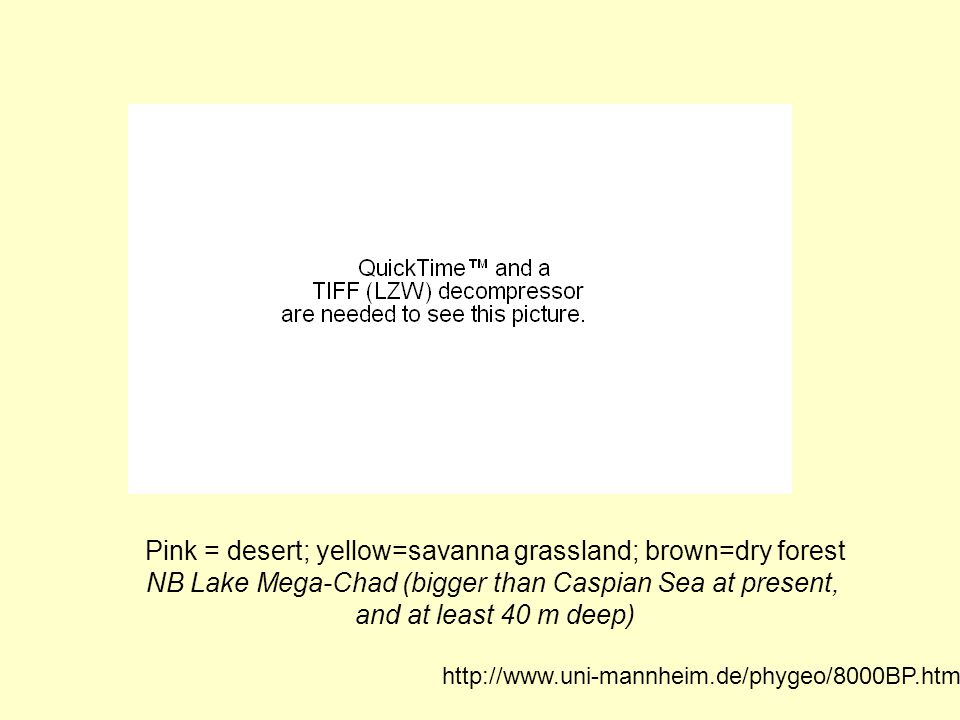 Pink = desert; yellow=savanna grassland; brown=dry forest