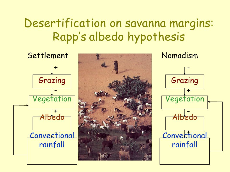 Desertification on savanna margins: Rapp's albedo hypothesis