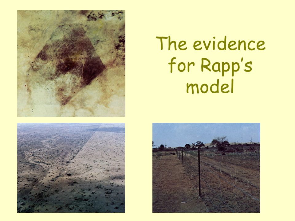 The evidence for Rapp's model