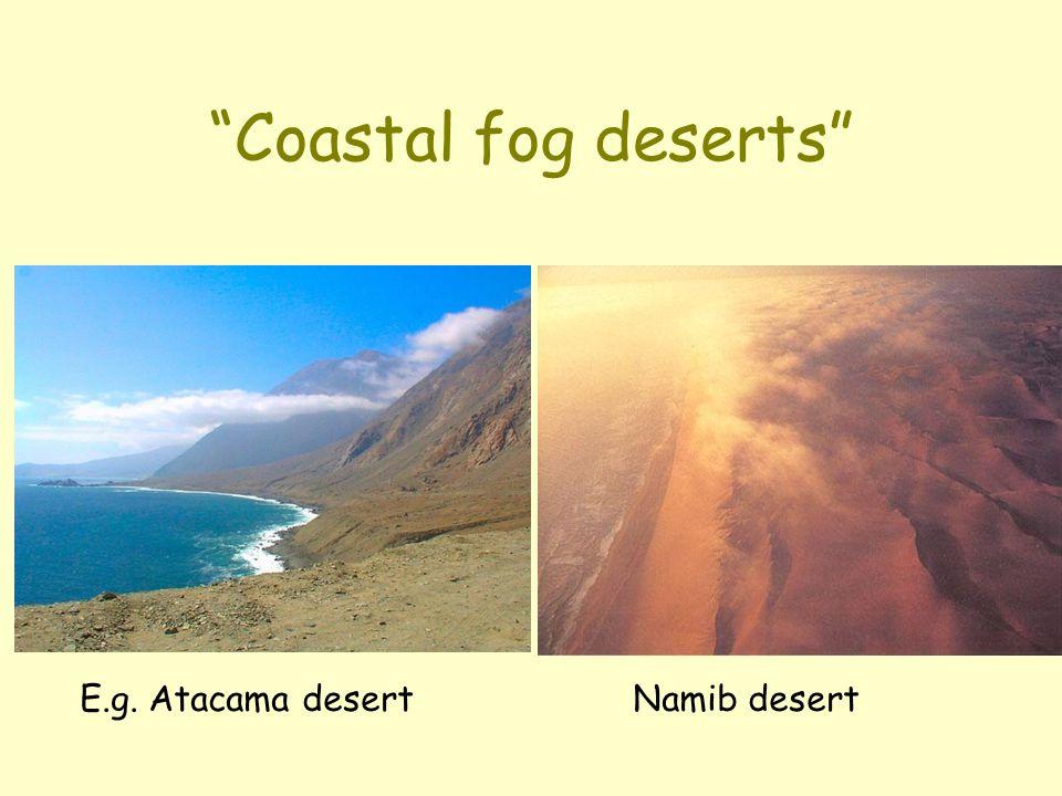 Coastal fog deserts E.g. Atacama desert Namib desert