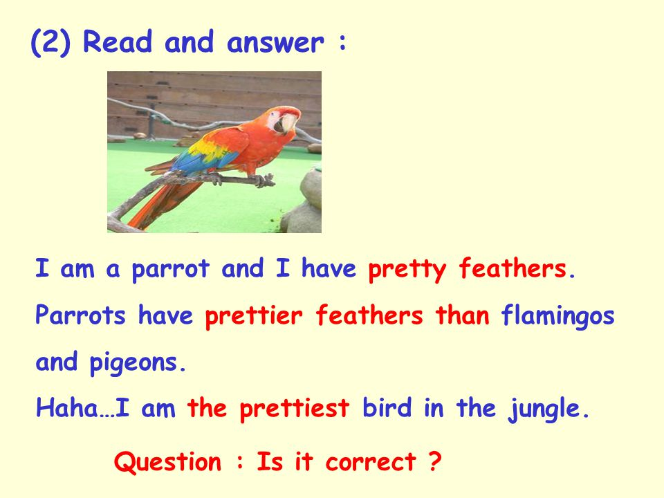 (2) Read and answer : I am a parrot and I have pretty feathers.