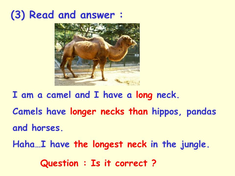 (3) Read and answer : I am a camel and I have a long neck.