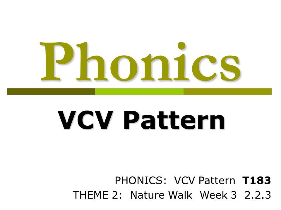 Phonics VCV Pattern PHONICS: VCV Pattern T183