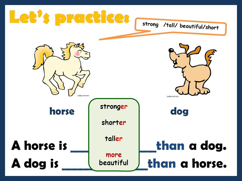 Let's practice: A horse is ______________than a dog.