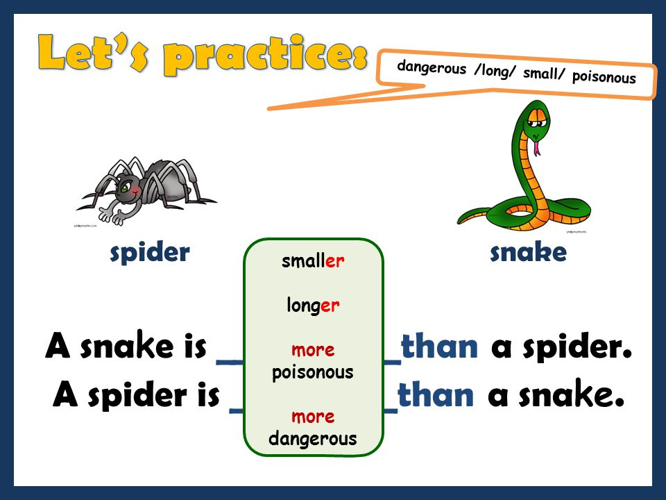 Let's practice: A snake is ___________than a spider.