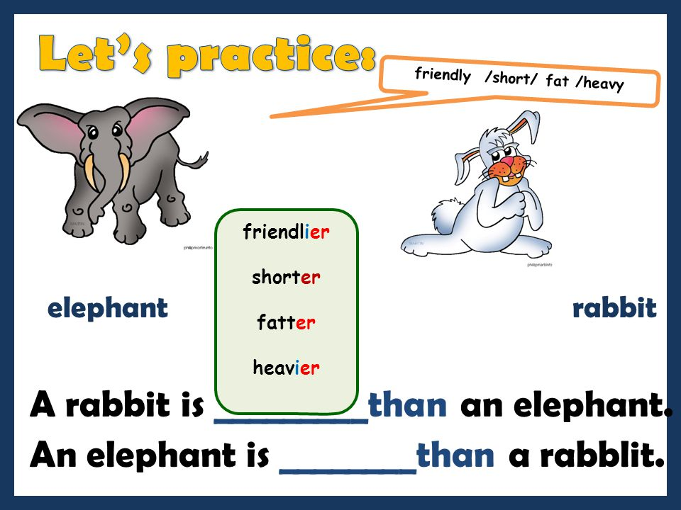 friendly /short/ fat /heavy A rabbit is _________than an elephant.
