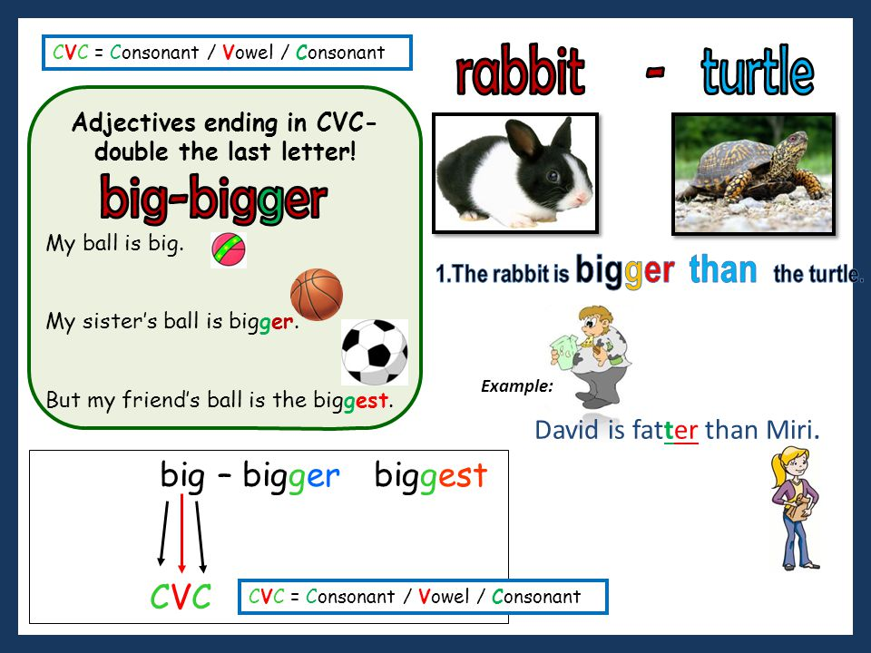 Adjectives ending in CVC- 1.The rabbit is bigger than the turtle.