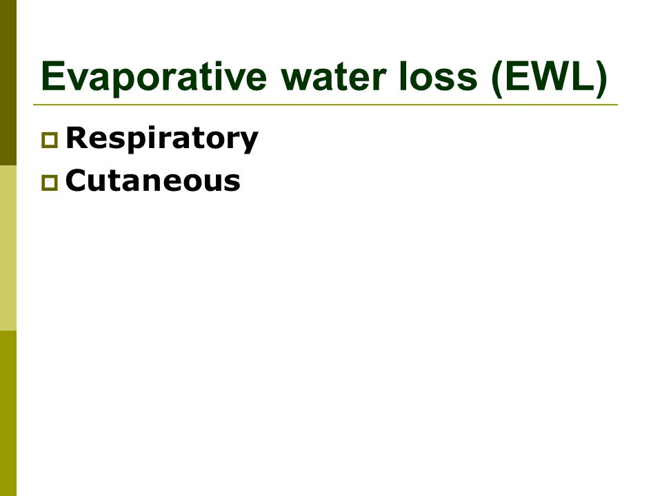 Evaporative water loss (EWL)