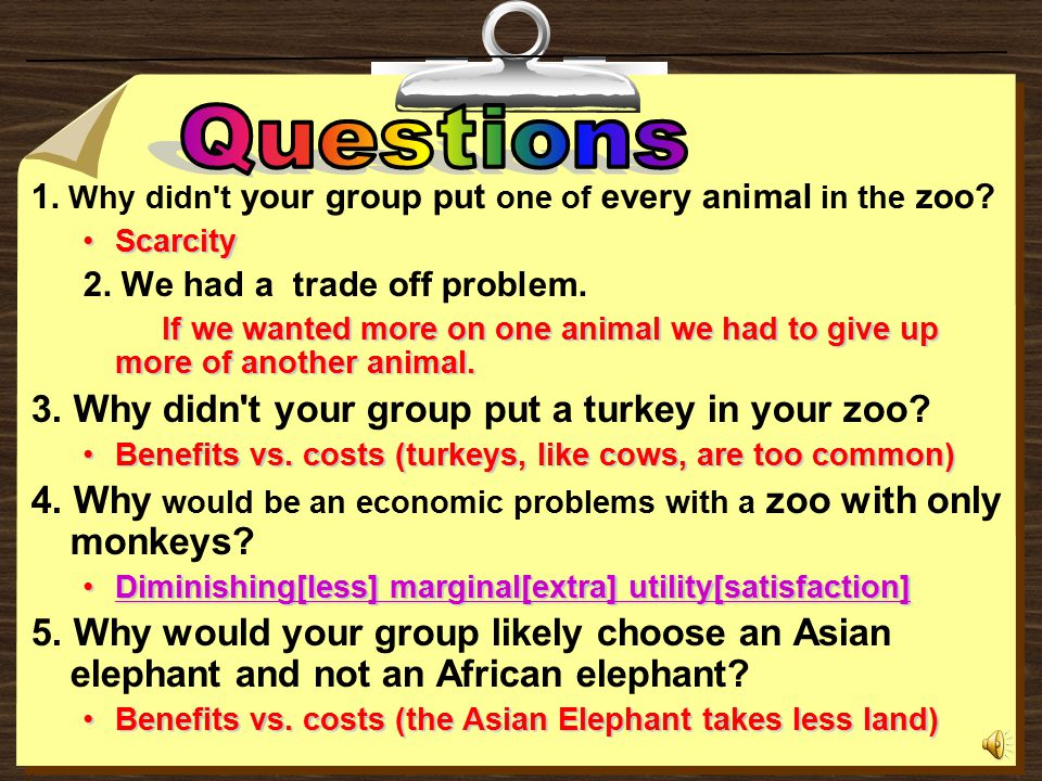 3. Why didn t your group put a turkey in your zoo