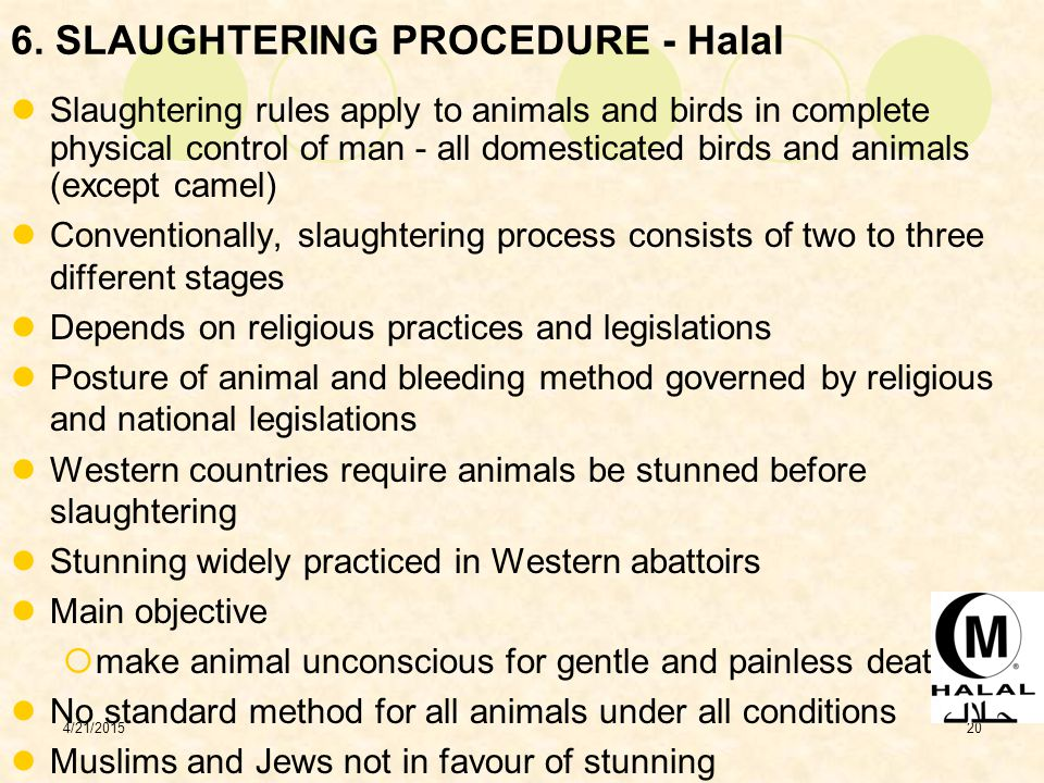 6. SLAUGHTERING PROCEDURE - Halal