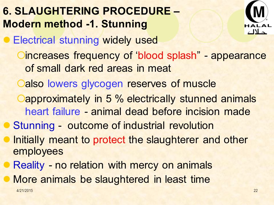 6. SLAUGHTERING PROCEDURE – Modern method -1. Stunning
