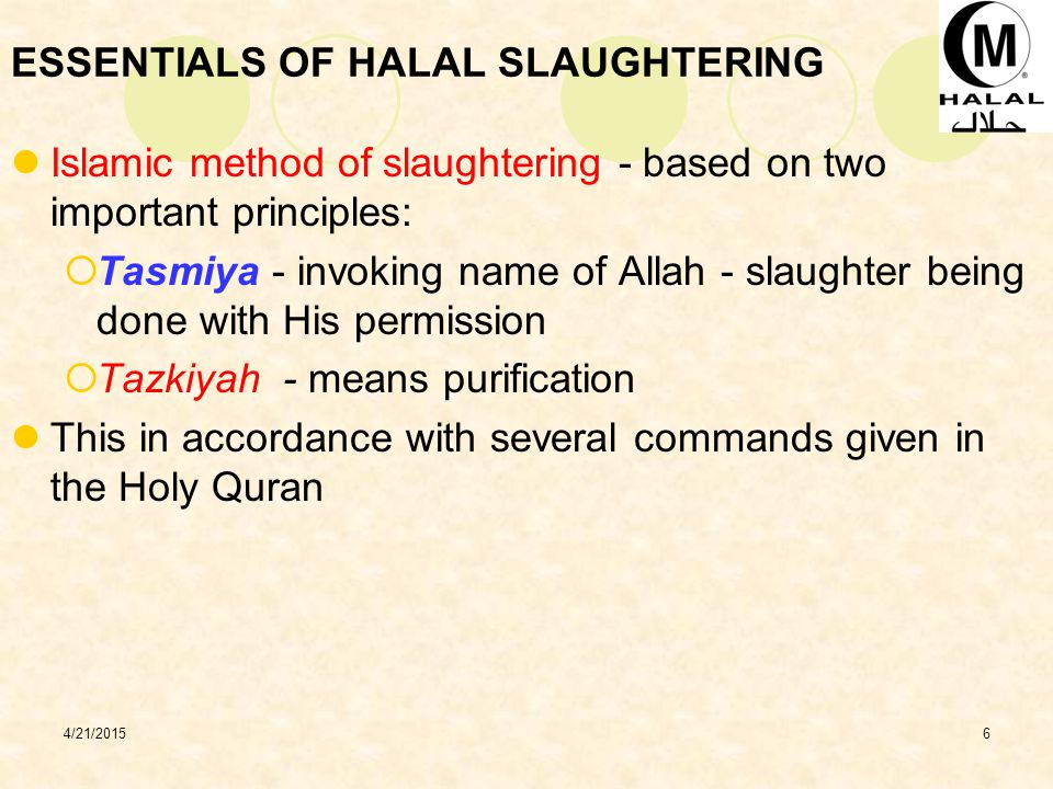 ESSENTIALS OF HALAL SLAUGHTERING