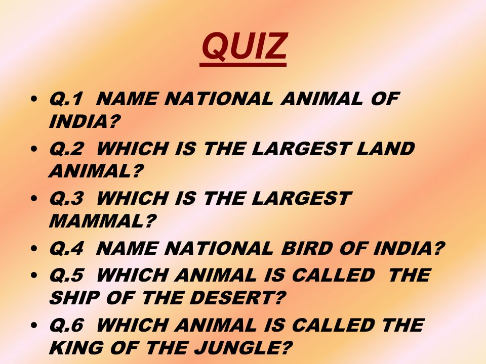 QUIZ Q.1 NAME NATIONAL ANIMAL OF INDIA