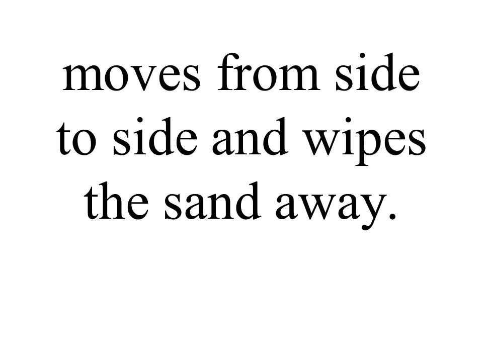 moves from side to side and wipes the sand away.