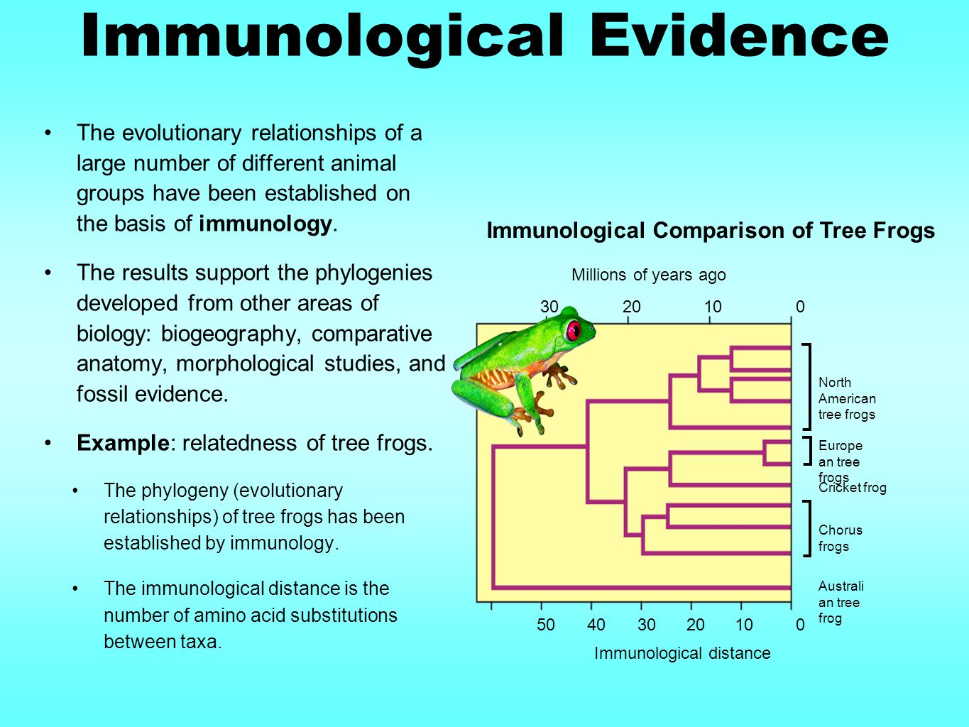 Immunological Evidence