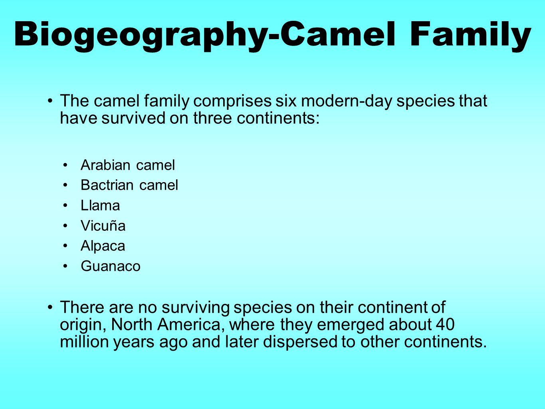Biogeography-Camel Family