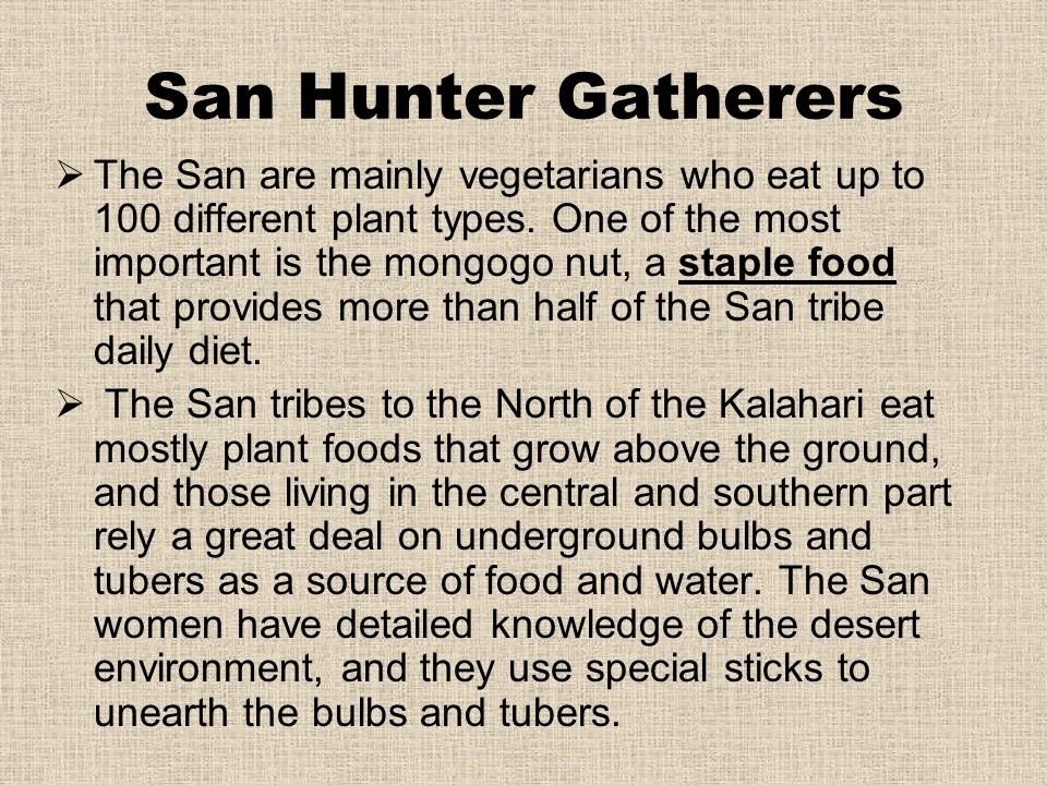 San Hunter Gatherers
