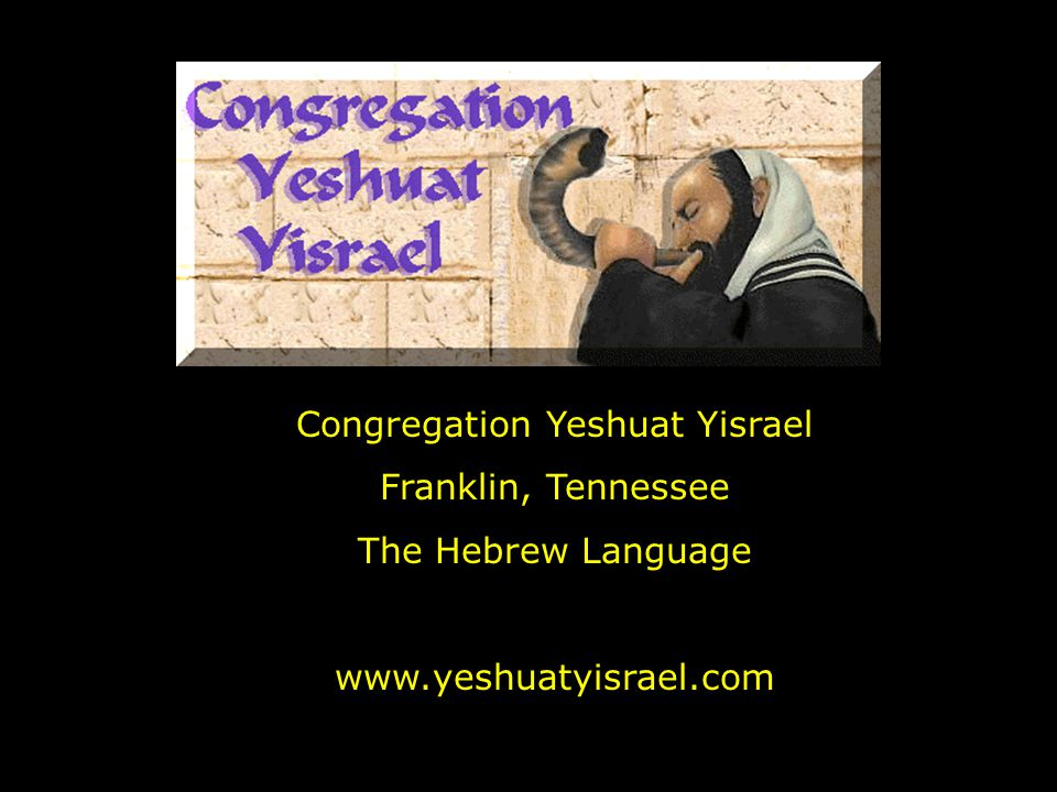 Congregation Yeshuat Yisrael