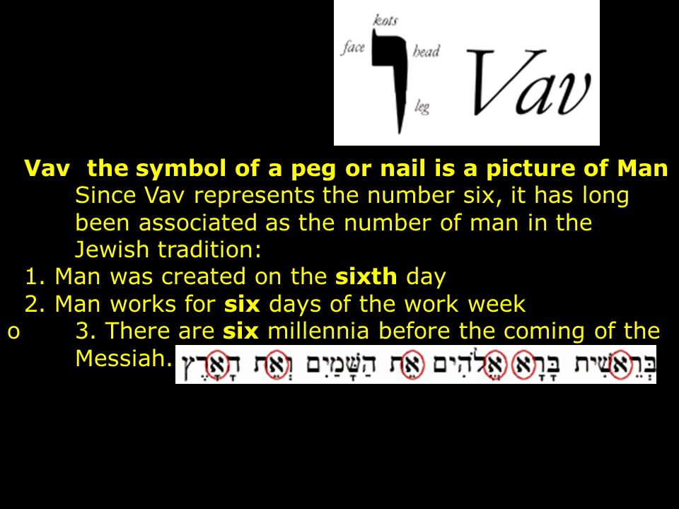 Vav the symbol of a peg or nail is a picture of Man