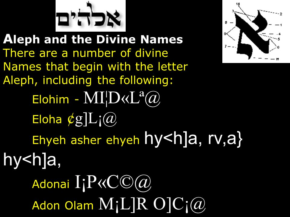 Aleph and the Divine Names There are a number of divine