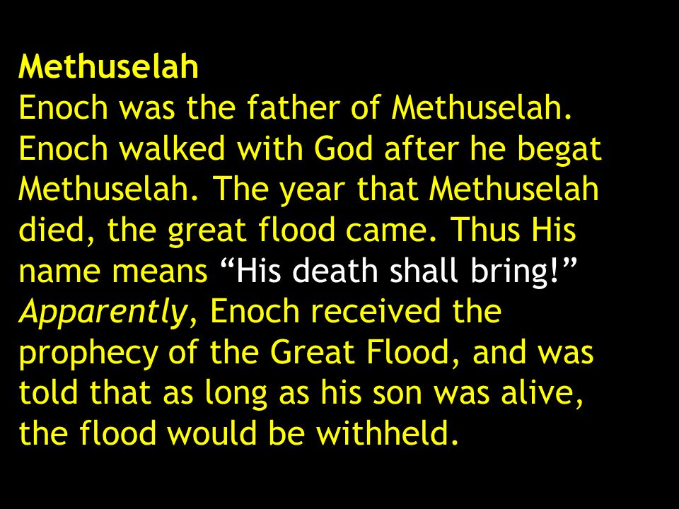 Methuselah Enoch was the father of Methuselah