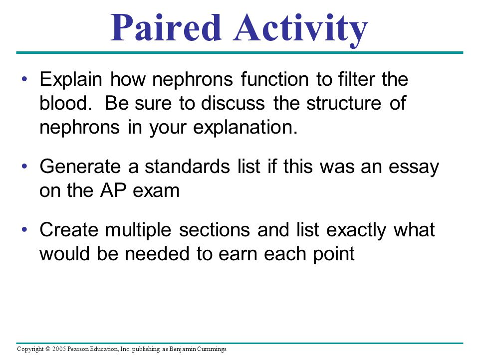 Paired Activity Explain how nephrons function to filter the blood. Be sure to discuss the structure of nephrons in your explanation.