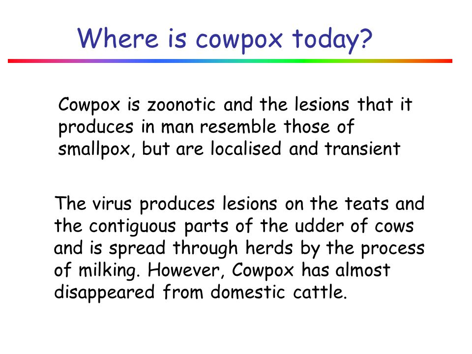 January 2008 Where is cowpox today