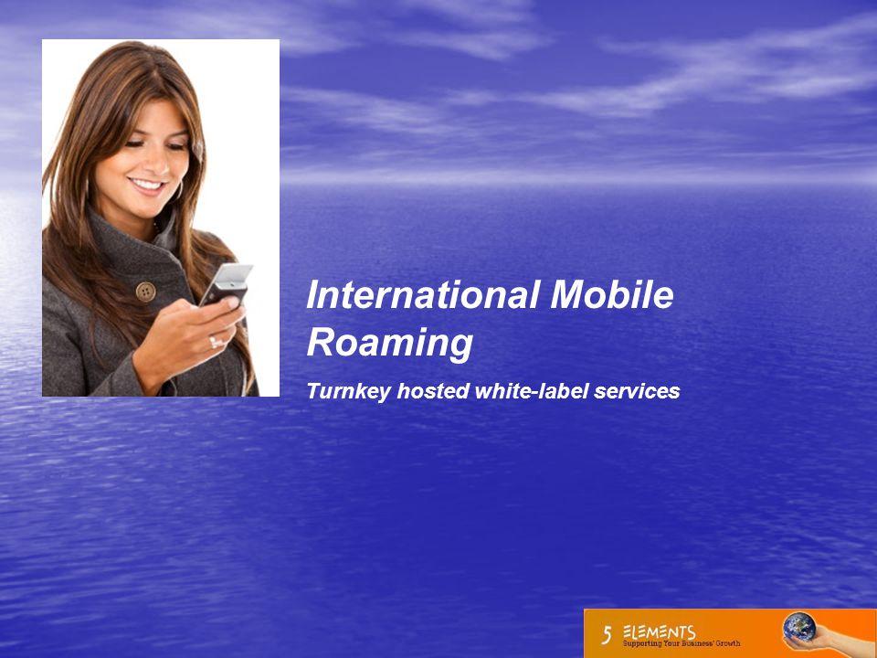 International Mobile Roaming