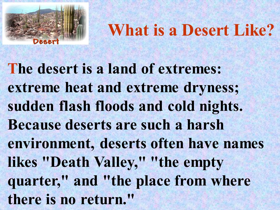 What is a Desert Like