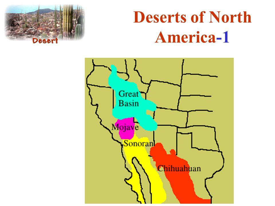 Deserts of North America-1