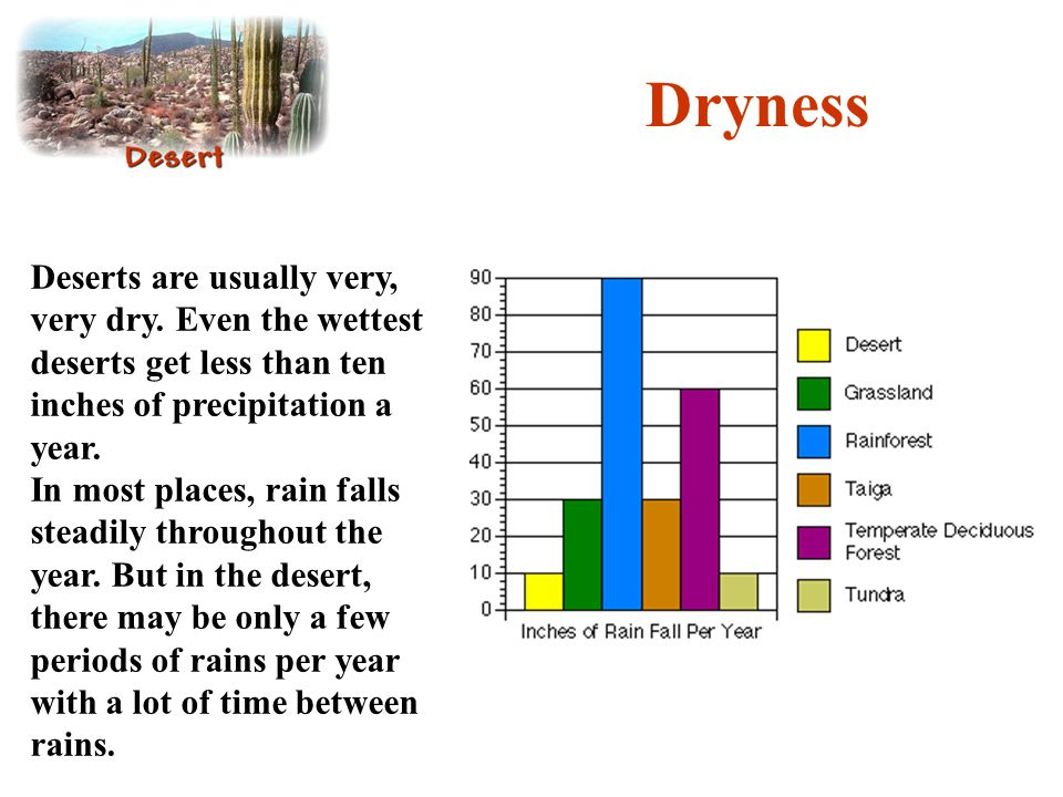 Dryness Deserts are usually very, very dry. Even the wettest deserts get less than ten inches of precipitation a year.