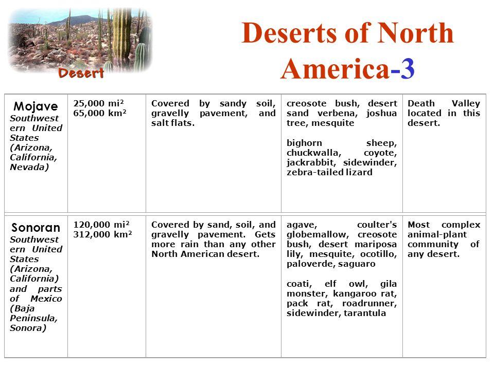 Deserts of North America-3