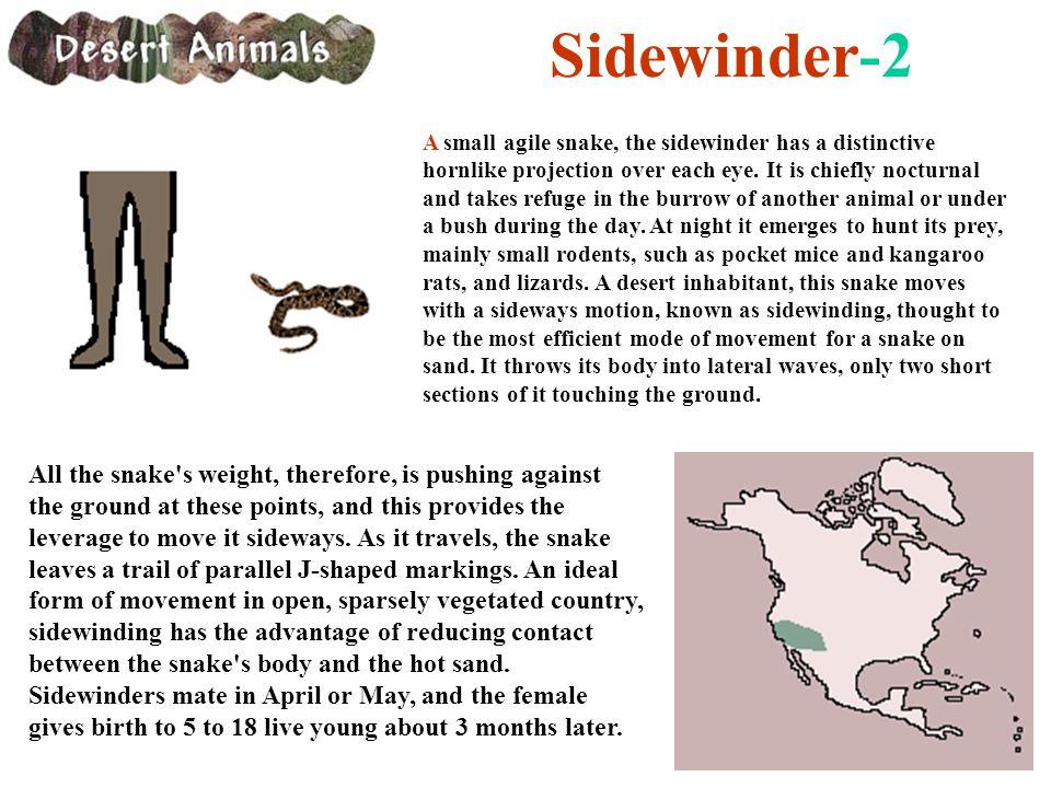 Sidewinder-2