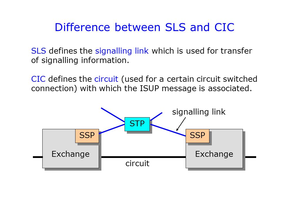 Difference between SLS and CIC