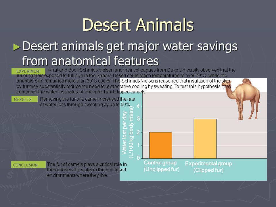 Desert Animals Desert animals get major water savings from anatomical features.