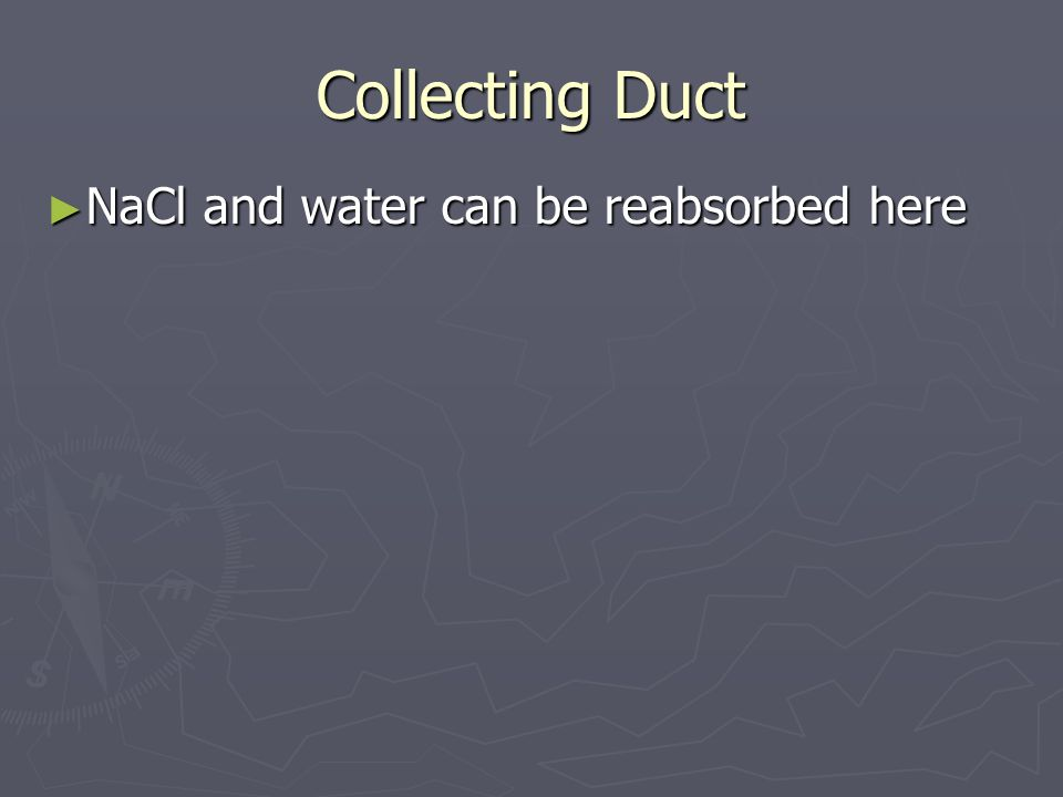 Collecting Duct NaCl and water can be reabsorbed here