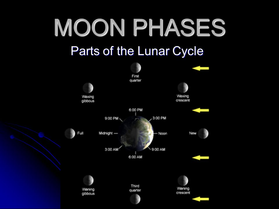 Parts of the Lunar Cycle