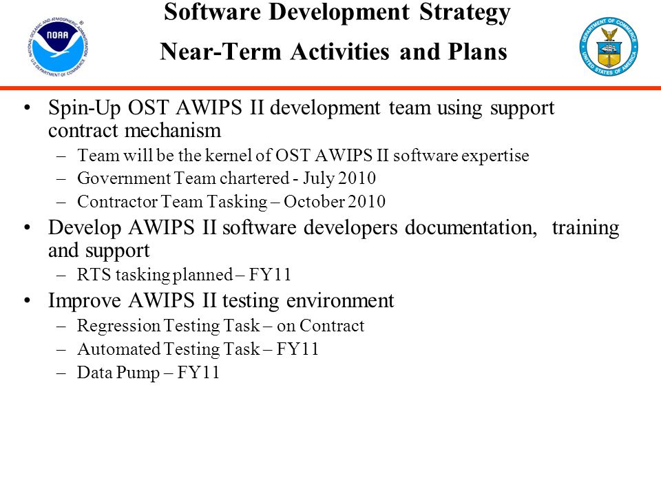 Software Development Strategy Near-Term Activities and Plans
