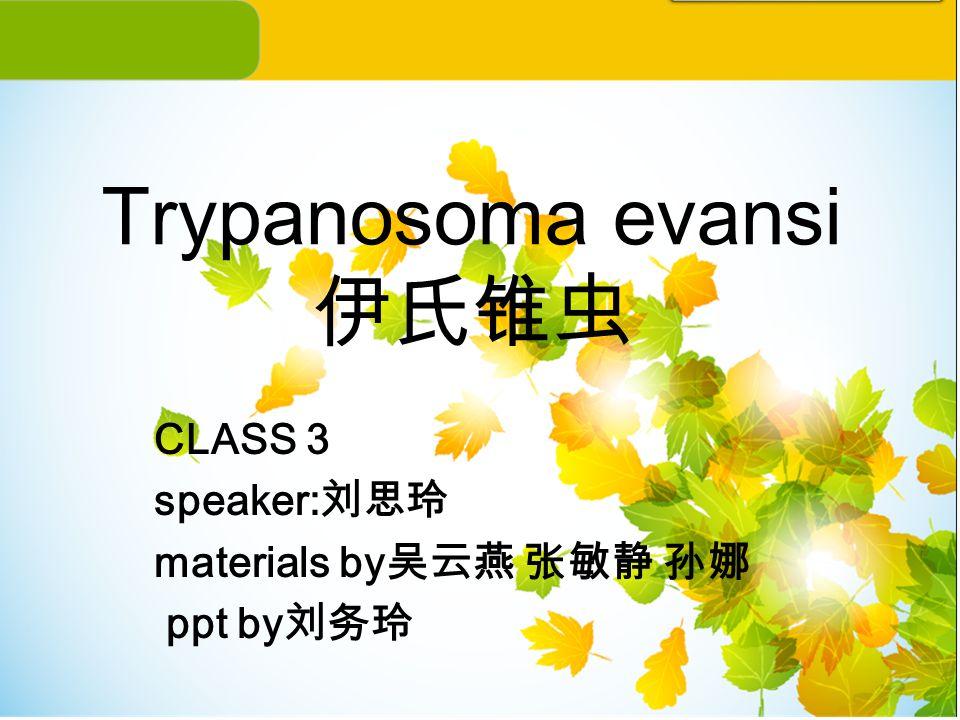 Trypanosoma evansi 伊氏锥虫