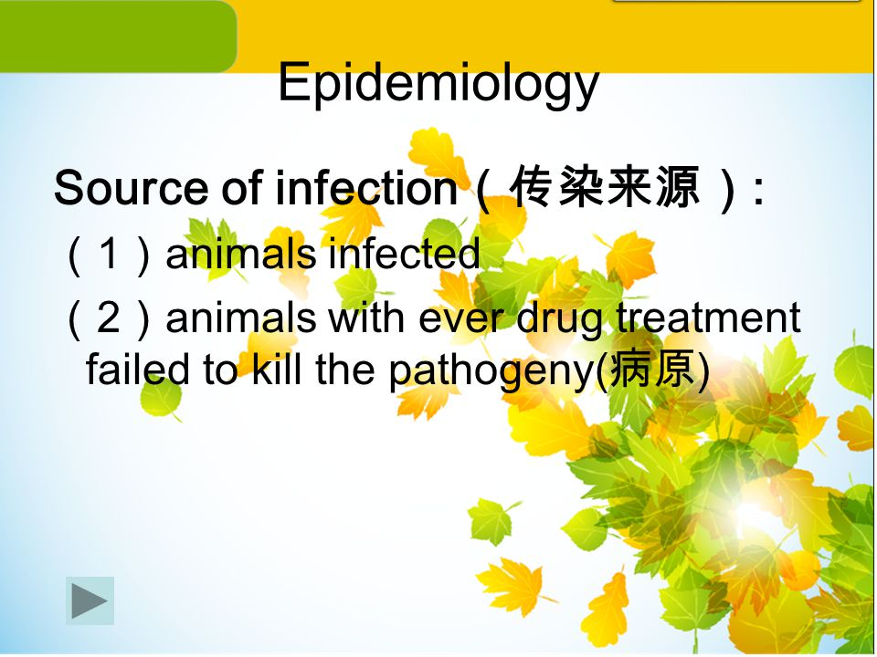 Epidemiology Source of infection(传染来源): (1)animals infected