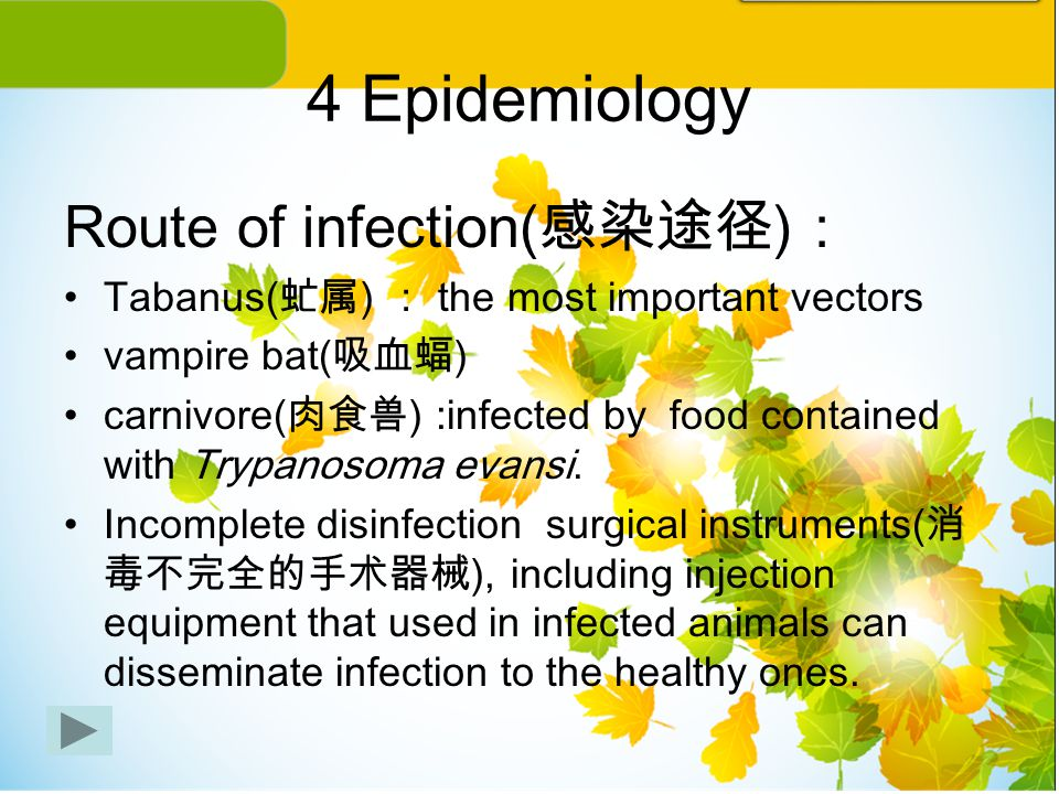 4 Epidemiology Route of infection(感染途径):