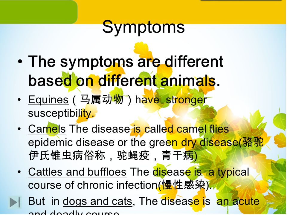 Symptoms The symptoms are different based on different animals.