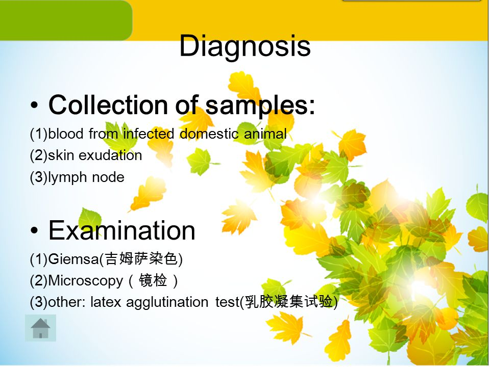 Diagnosis Collection of samples: Examination